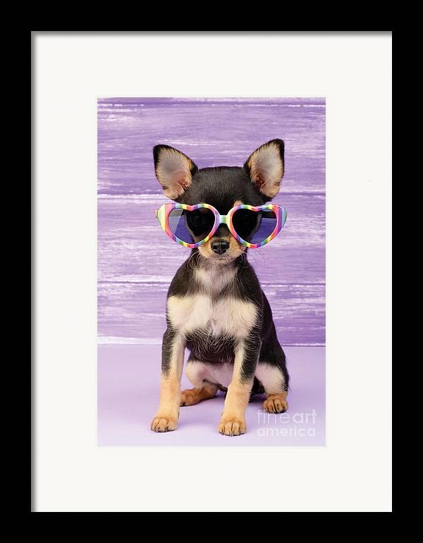 Sunglasses Framed Print featuring the digital art Rainbow Sunglasses by Greg Cuddiford