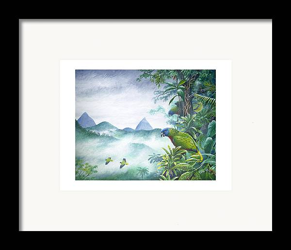 Chris Cox Framed Print featuring the painting Rainforest Realm - St. Lucia Parrots by Christopher Cox