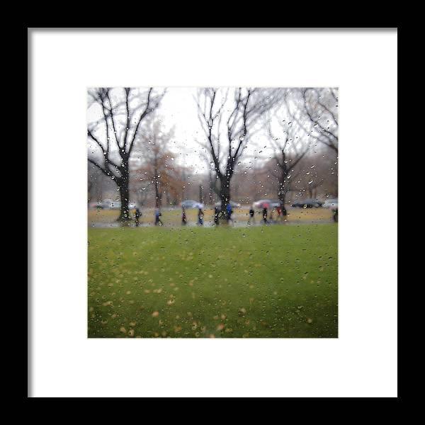 Rain Framed Print featuring the photograph Rainy Day Mfa by David Stone