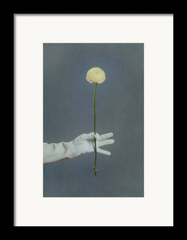 Flower Framed Print featuring the photograph Ranunculus by Joana Kruse