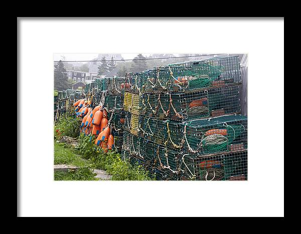 Lobster Framed Print featuring the photograph Ready To Go by Jean Macaluso