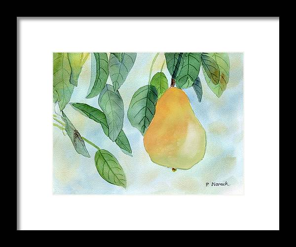 Fruit Framed Print featuring the painting Ready To Pick by Patricia Novack