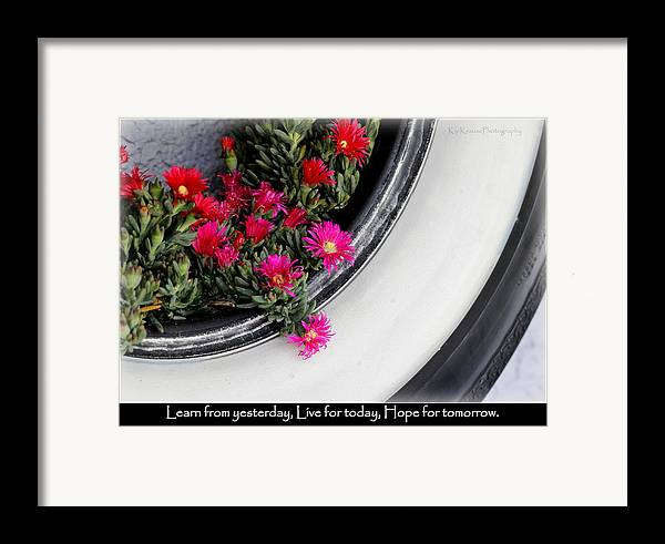 Flowers Framed Print featuring the photograph Recycle Lifecycle by Kip Krause