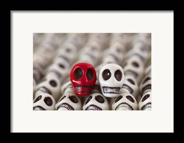 Smiles Framed Print featuring the photograph Red And White by Mike Herdering