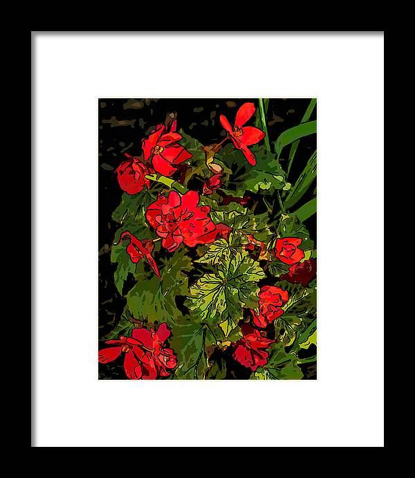 Steve Harrington Framed Print featuring the photograph Red Geranium Line Art by Steve Harrington