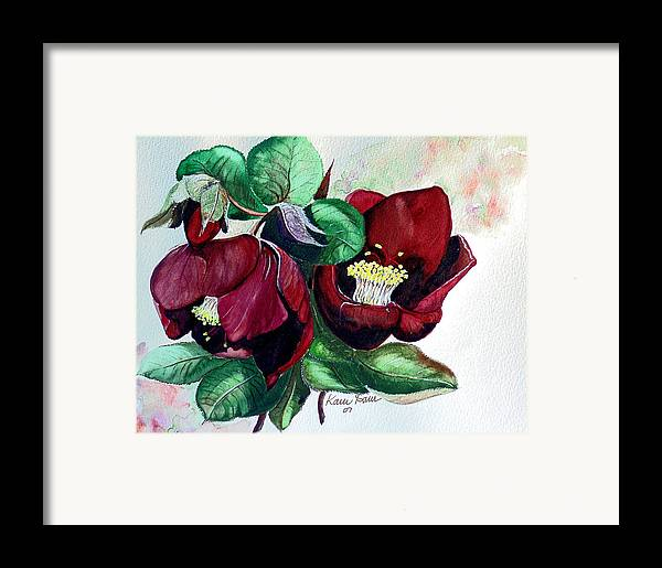 Red Helleborous Painting Flower Painting  Botanical Painting Watercolor Painting Original Painting Floral Painting Flower Painting Red Painting  Greeting Painting Framed Print featuring the painting Red Helleborous by Karin Dawn Kelshall- Best