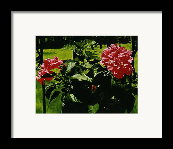 Floral Framed Print featuring the painting Red Hibiscus by Gary Hernandez