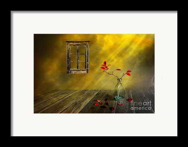 Art Framed Print featuring the photograph Red Leaves by Veikko Suikkanen
