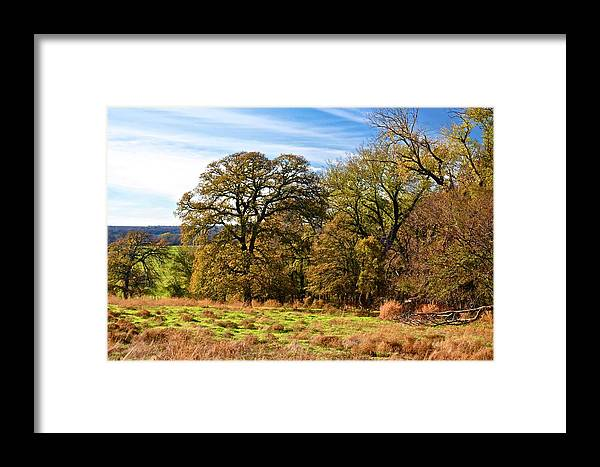 Forest Framed Print featuring the photograph Red River Valley by Ricardo J Ruiz de Porras