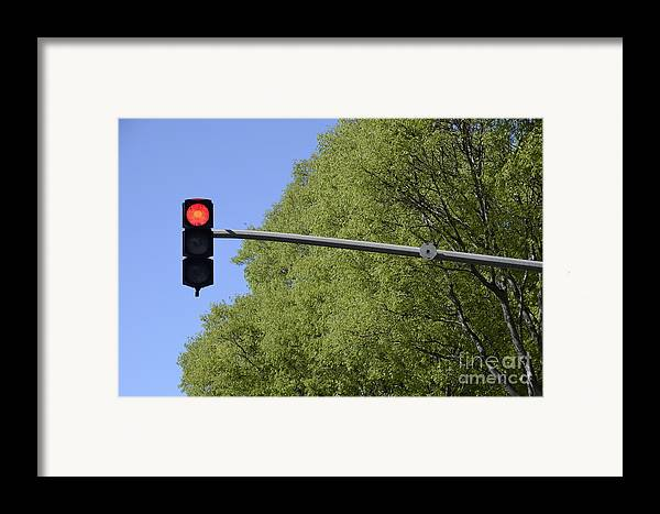Guidance Framed Print featuring the photograph Red Traffic Light By Trees by Sami Sarkis