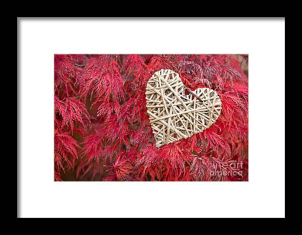 Heart Framed Print featuring the photograph Red Valentine by Delphimages Photo Creations