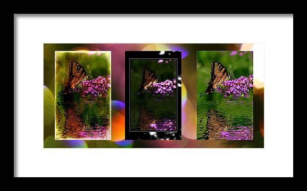 Tiger Swallowtail Framed Print featuring the photograph Reflection Above The Pond by Ericamaxine Price