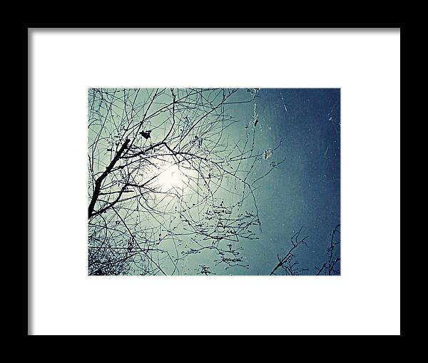 Reflection Framed Print featuring the photograph Reflection by Andrea Dale