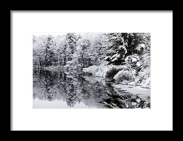 Maine Framed Print featuring the photograph Reflection of Me by Brenda Giasson
