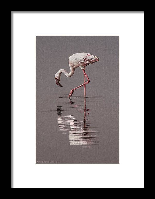 Flamingo Framed Print featuring the drawing Reflections by Stirring Images