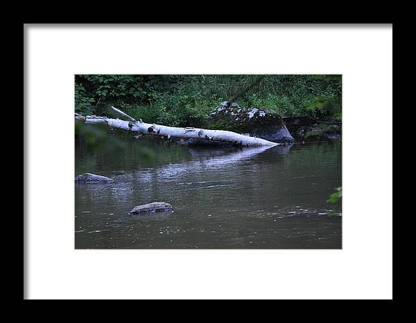 Framed Print featuring the photograph Reflections by Linda Ogburn