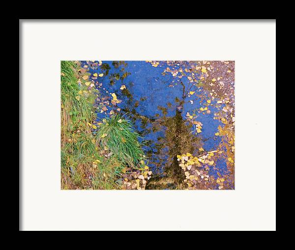 Fall Framed Print featuring the photograph Reflections Of Fall by Feva Fotos