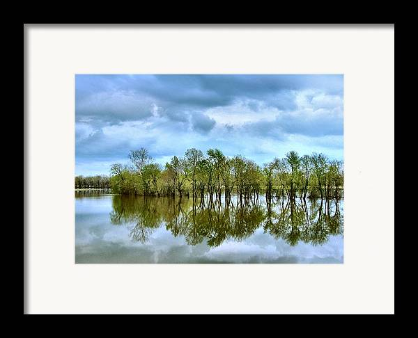 Spring Framed Print featuring the photograph Reflections Of Spring by Julie Dant