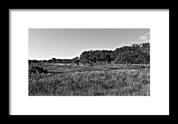 Photography Framed Print featuring the photograph Relaxing by Justin Miller