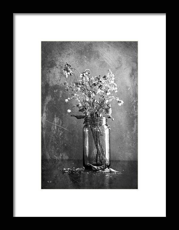 Vintage Jar Framed Print featuring the photograph Remains Of The Season by Theresa Tahara