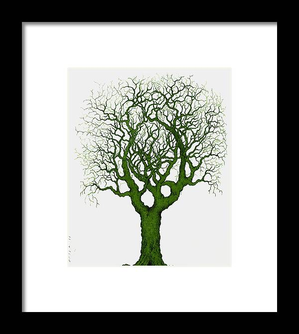 Green Framed Print featuring the painting Renewal by Andrew Zeutzius