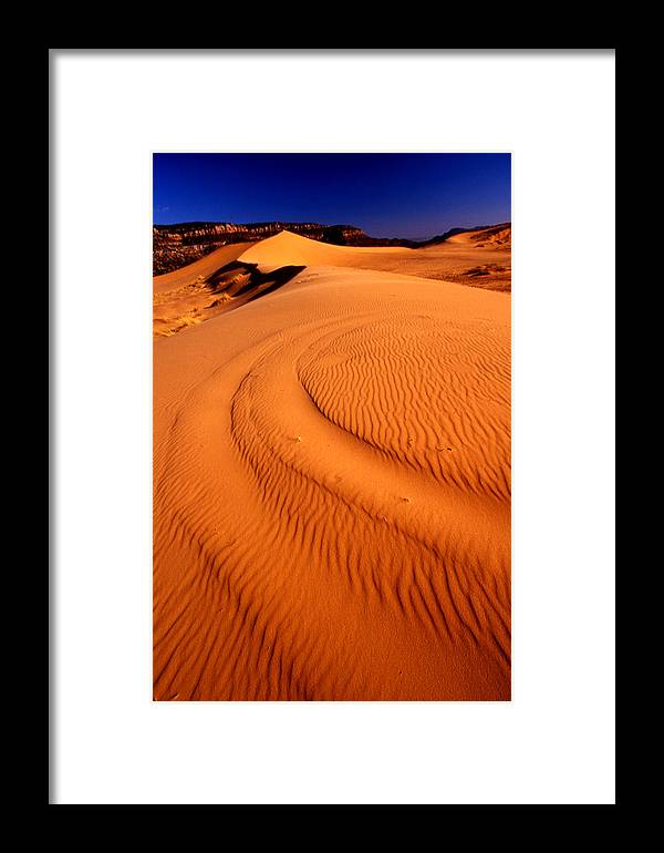 Nature Framed Print featuring the photograph Repair Work by Jeannette Wood