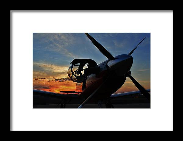 T-6 Framed Print featuring the photograph Repose by Scott Stephens