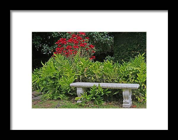 Rest Framed Print featuring the photograph Restful Park Bench by John Orsbun