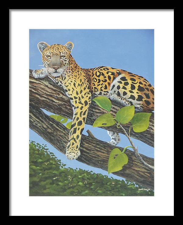African Wildlife    Leopard In Tree  Foliage Framed Print featuring the painting Resting After Lunch by James Lawler