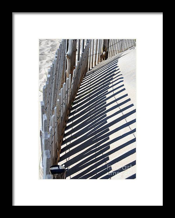 Scenic Tours Framed Print featuring the photograph Restorative Shadows by Skip Willits