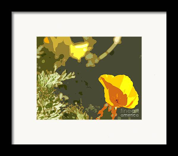 Abstract California Poppies Photographs Canvas Prints Framed Print featuring the photograph Retro Abstract Poppies 4 by Artist and Photographer Laura Wrede