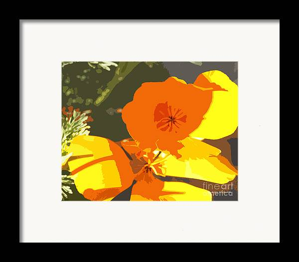 Abstract California Poppies Framed Print featuring the photograph Retro Abstract Poppies by Artist and Photographer Laura Wrede