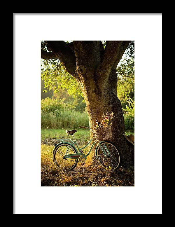 Grass Framed Print featuring the photograph Retro Bicycle With Red Wine In Picnic by Nightanddayimages