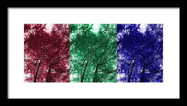 Tree Framed Print featuring the digital art Rgb Trees by Ron Hedges