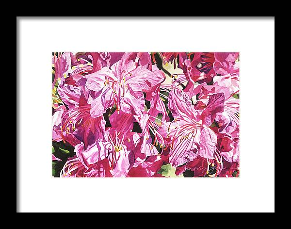 Floral Framed Print featuring the painting Rhodo Blossoms by David Lloyd Glover