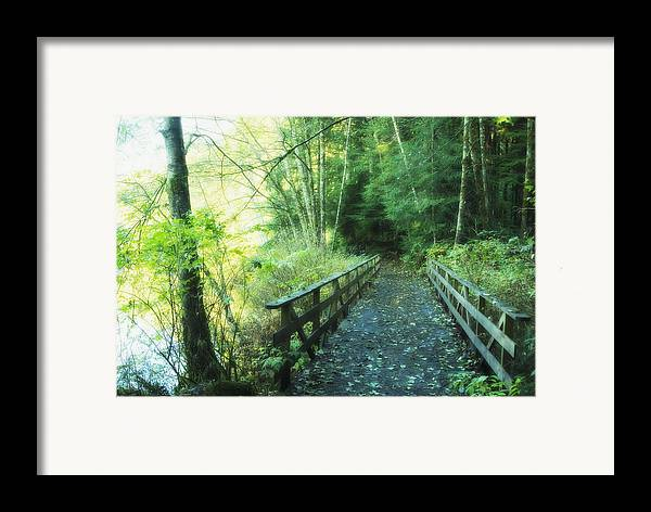 Bridge Framed Print featuring the photograph Rice Lake In North Vancouver by Marlene Ford