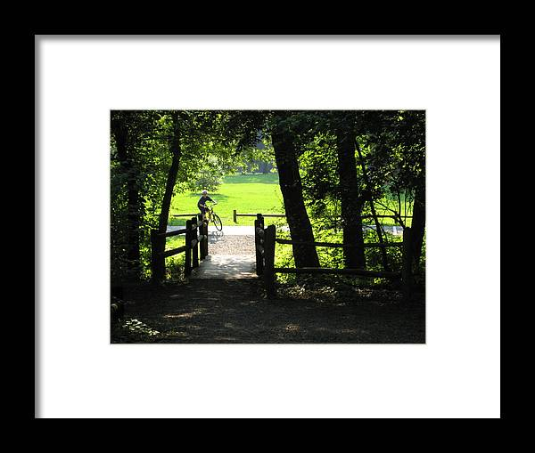 Trails Framed Print featuring the photograph Riding The Trails by Robin Vargo