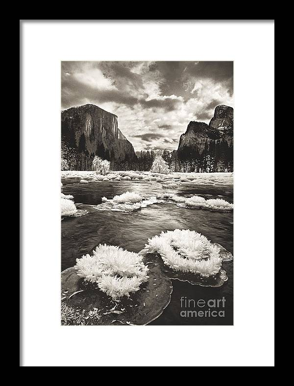 North America Framed Print featuring the photograph Rime Ice On The Merced In Black And White by Dave Welling