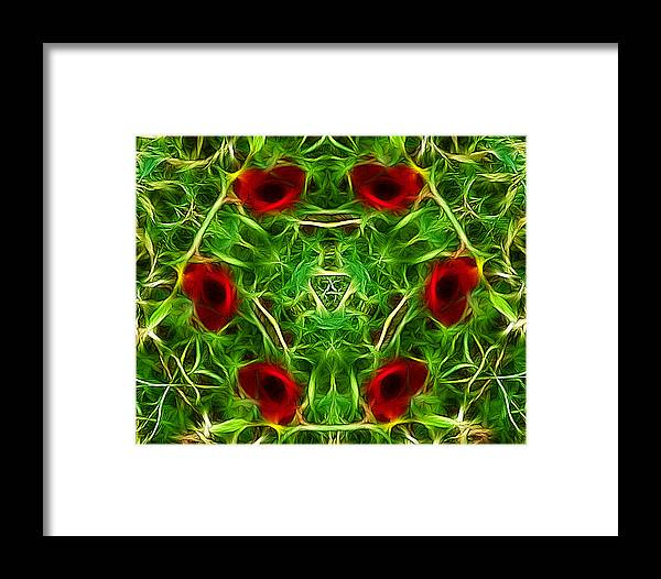 Poppies Framed Print featuring the photograph Ring Of Poppies by Lynn Bolt