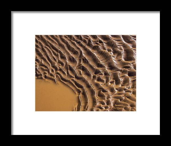 Mud Framed Print featuring the photograph Ripples And Fins by Deborah Hughes