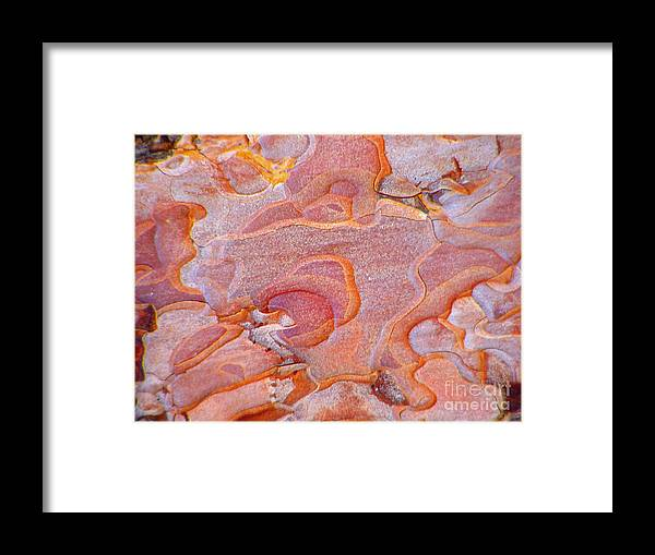 Pattern Framed Print featuring the photograph Ripples In Orange by Jennifer Apffel
