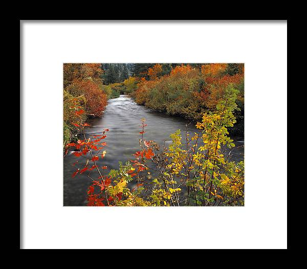 Idaho Scenics Framed Print featuring the photograph River Color by Leland D Howard