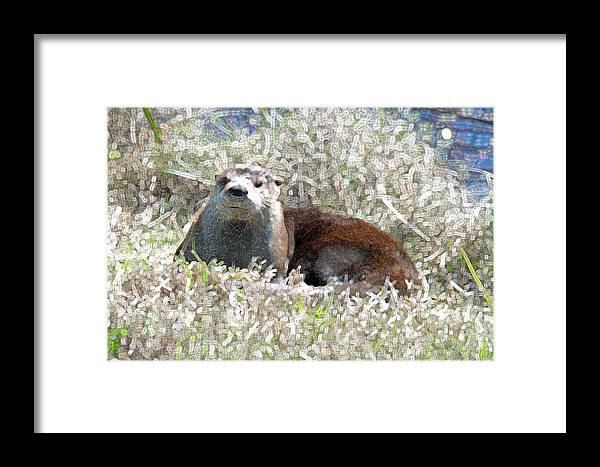 Mammal Framed Print featuring the photograph River Otter by Bob Richter