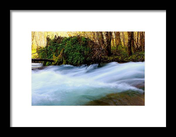 Touring Over Land Framed Print featuring the photograph Rivers Edge by Tim Rice