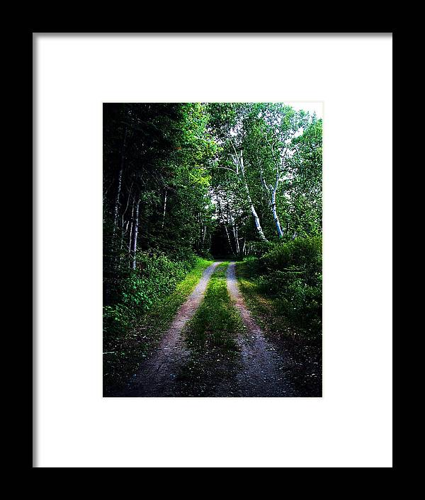 Photography Framed Print featuring the photograph Road Trip- Back Country Road by Joy Nichols