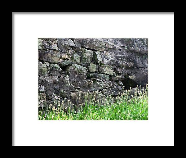 Nature Framed Print featuring the photograph Rocks And Grass by Melissa Stoudt