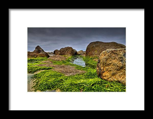 Rock Framed Print featuring the photograph Rocks And Seaweed by Joseph Bowman