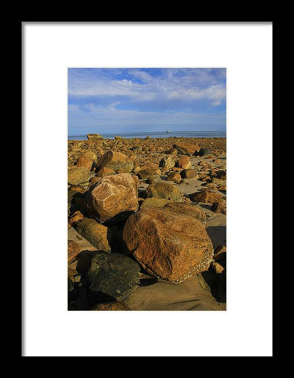 Cape Cod Framed Print featuring the photograph Rocks On Sesuit by David DeCenzo