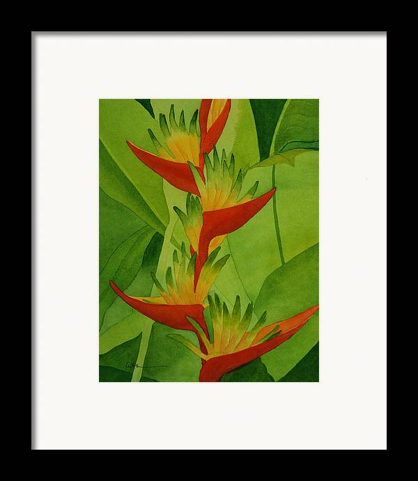 Heliconia Framed Print featuring the painting Rojo Sobre Verde by Diane Cutter