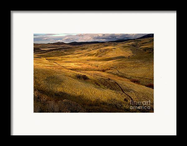 Landsacape Framed Print featuring the photograph Rolling Hills by Robert Bales